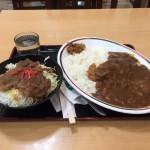 仙台激安大盛り朝食!24時間営業「半田屋」でカツカレー&焼肉丼!