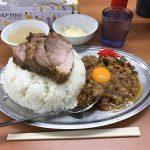 【神保町へ移転】メガ盛りマシライス!「立川マシマシ 5号店」で暴君セット!