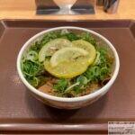 すき家で「ねぎ塩レモン牛丼」を世界一詳しく調査【期間限定メニュー】