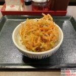 【なか卯】海老と枝豆のかき揚げ丼を世界一詳しく調査【期間限定メニュー】